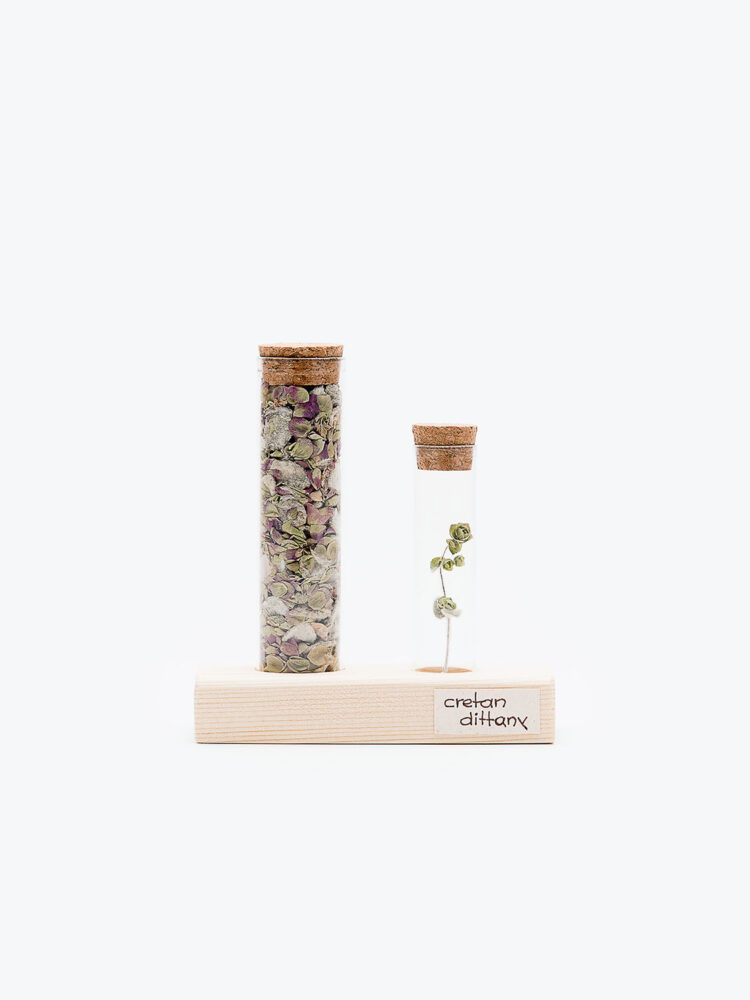 cretan-dittany-test-tube-set-for-use-and-decor
